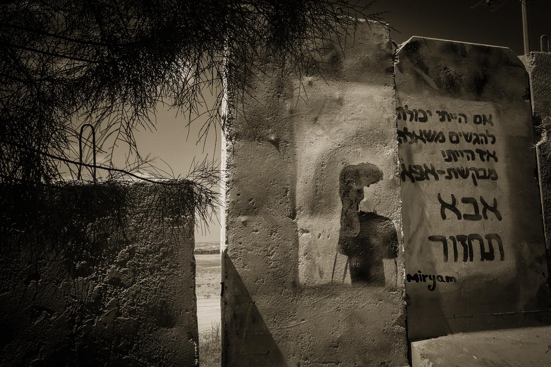 Copyright-Dan Haimovich